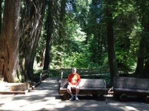 John on bench in heart of the grove