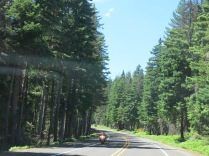 Hwy 12, White Pass Scenic Byway