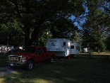 our site, under a very old big leaf maple tree