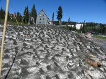 strange formations on melting snow