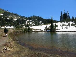 trail around Tipsoo Lake, Mount Rainier NP