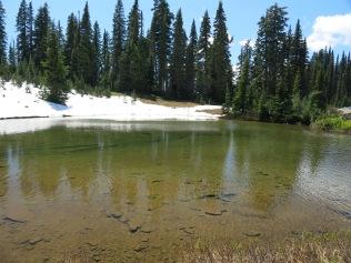 Tipsoo Lake, Mount Rainier NP