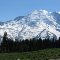 Mount Rainier too close to capture from roadside