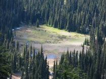 water meandering across meadow