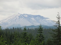 view Mount St Helens from Hwy 99