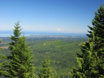 roadside view of Mt Baker in distance, Olympic National Park