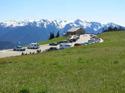 Hurricane Ridge Visitor Center, Olympic National Park