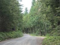 8 miles of gravel road to Deer Park