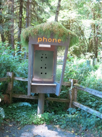 old phone booth by Hoh Visitor Center