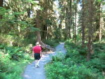 John on Spruce Nature Trail, Hoh Rain Forest