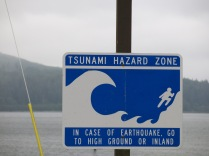 there were Tsunami evacuation route signs at many intersections
