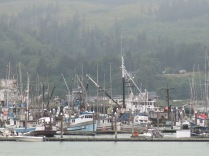 fishing boats in marina at Neah Bay