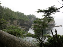 first view point, Cape Flattery Point