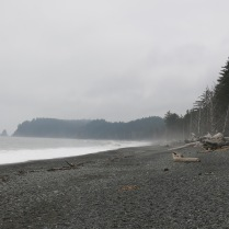 mist and fog at Rialto Beach