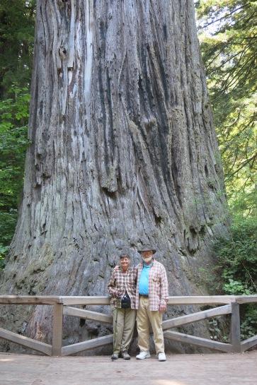 Holly & John by Big Tree