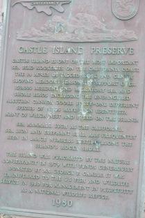 Castle Island Preserve - sea bird rookerie