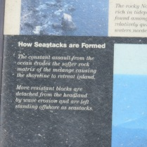 how seastacks are formed