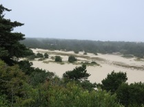view of sand dunes from boardwalk