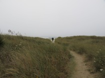 AJ walking on the dunes to the Pacific Ocean