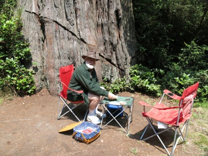 our picnic lunch at Lady Bird Johnson Grove