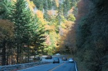 US Hwy 441 in the Smokies - around 4,200 feet elevation