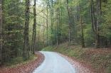 Greenbrier Road