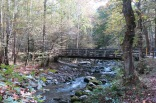 Little Pigeon River, along Greenbrier Road