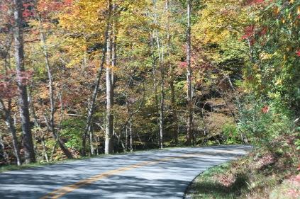 Little River Road
