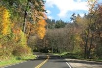10-21-13 Newfound Gap Road
