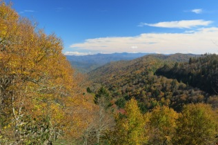 view from pullout along Clingmans Dome Road