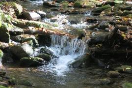 10-22-13 Cosby Creek