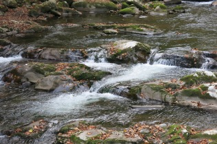 10-22-13 Baxter Creek, Great Smoky Mountains NP