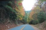 10-24-13 The woods were gorgeous heading into Cataloochee Valley