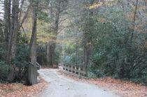 10-24-13 bridge over creek in Cataloochee