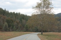 10-24-13 paved road in Cataloochee