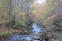 10-24-13 stream in Cataloochee