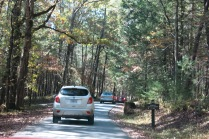 10-25-13 slow down on Cades Cove Road - moving at 6 mph