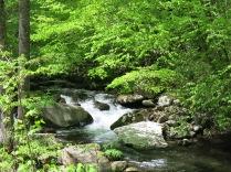 Oconaluftee River along Newfound Gap Road