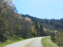 Driving the Blue Ridge Parkway to Balsam Mountain