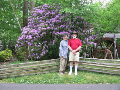 I love Catawba Rhododendron... This one is at our RV park