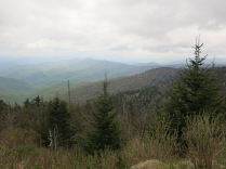 view at Clingman's Dome visitor center