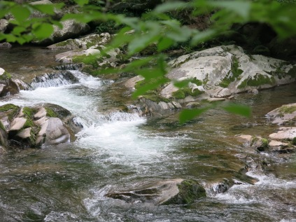 Cascades on Baxter Creek, Great Smoky Mountain NP
