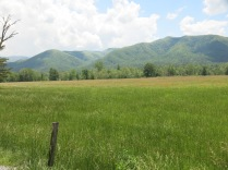 Cades Cove on a spring day