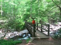 footbridge over Ramsey Prong, Ramsey Cascades Trail, GSM