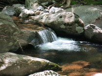 Cascading water, Ramsey Prong - Ramsey Cascades Trail, Great Smokies
