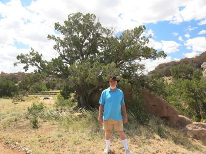 AJ, walking the path in the Turquoise Trail Sculpture Garden
