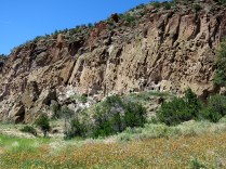 the cliff is riddled with caves and cliff dwellings