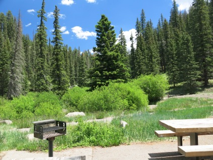Picnic and fishing area in Santa Fe National Forest, along road near Valles Caldera National Preserve
