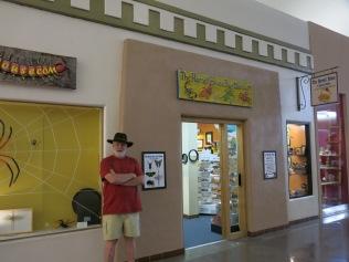 The Harrell House Bug Museum, Santa Fe