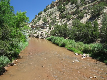 Pecos River, looking up river...